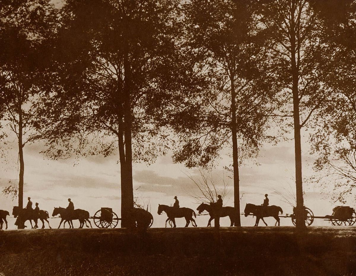 'Limbers carrying up ammunition at sunset', Ypres in 1917 by Frank Hurley, before the bellowing anger cleaved the woods. https://t.co/0zduPHRDDh
