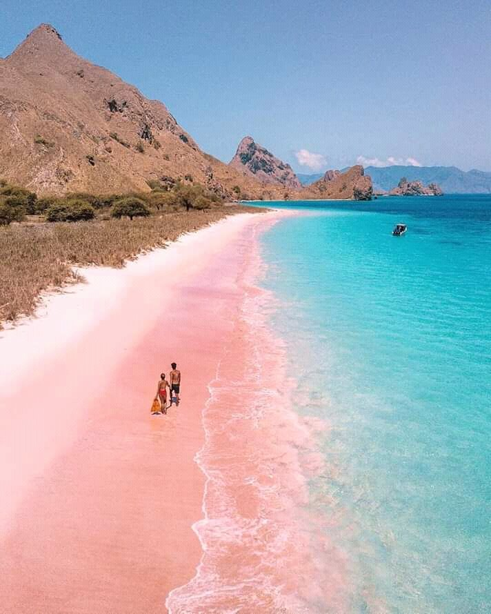 Komodo island East Nusa Tenggara... #Indahnyanegeriku https://t.co/bTA156tMZT