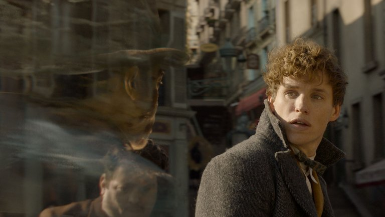 FantasticBeasts2 campaign rallies Harry Potter fans for next chapter