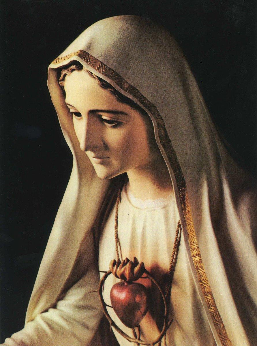 RT @SMD_SantaMadre: Consagración al Inmaculado Corazón de María   🙏📿   https://t.co/OeRK3rBcJ4 https://t.co/SrYni91TjI
