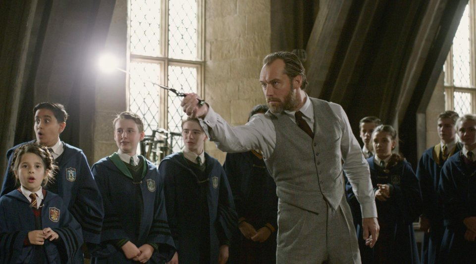Get details on all the beautiful wands from FantasticBeasts: