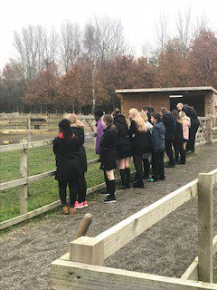 test Twitter Media - KS4 Pupils had a brilliant afternoon visiting the Animal Care Centre  at Eccles College #AimHigher https://t.co/1yk9aIZ7Ws