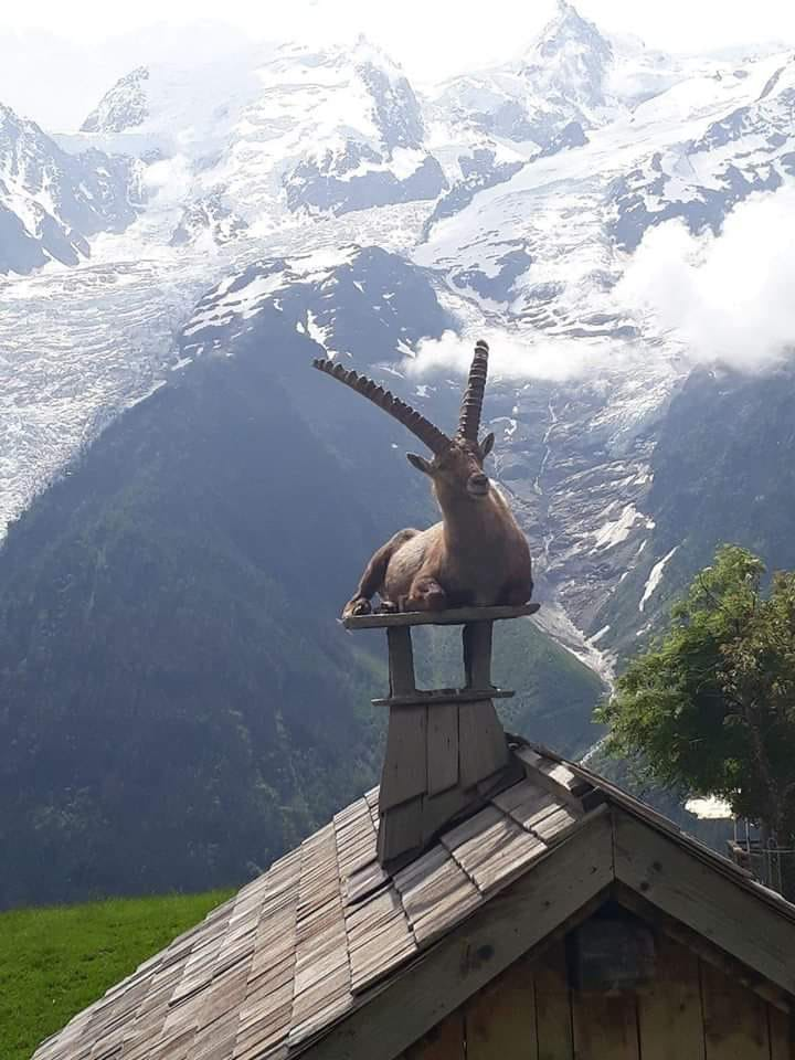 #Aosta