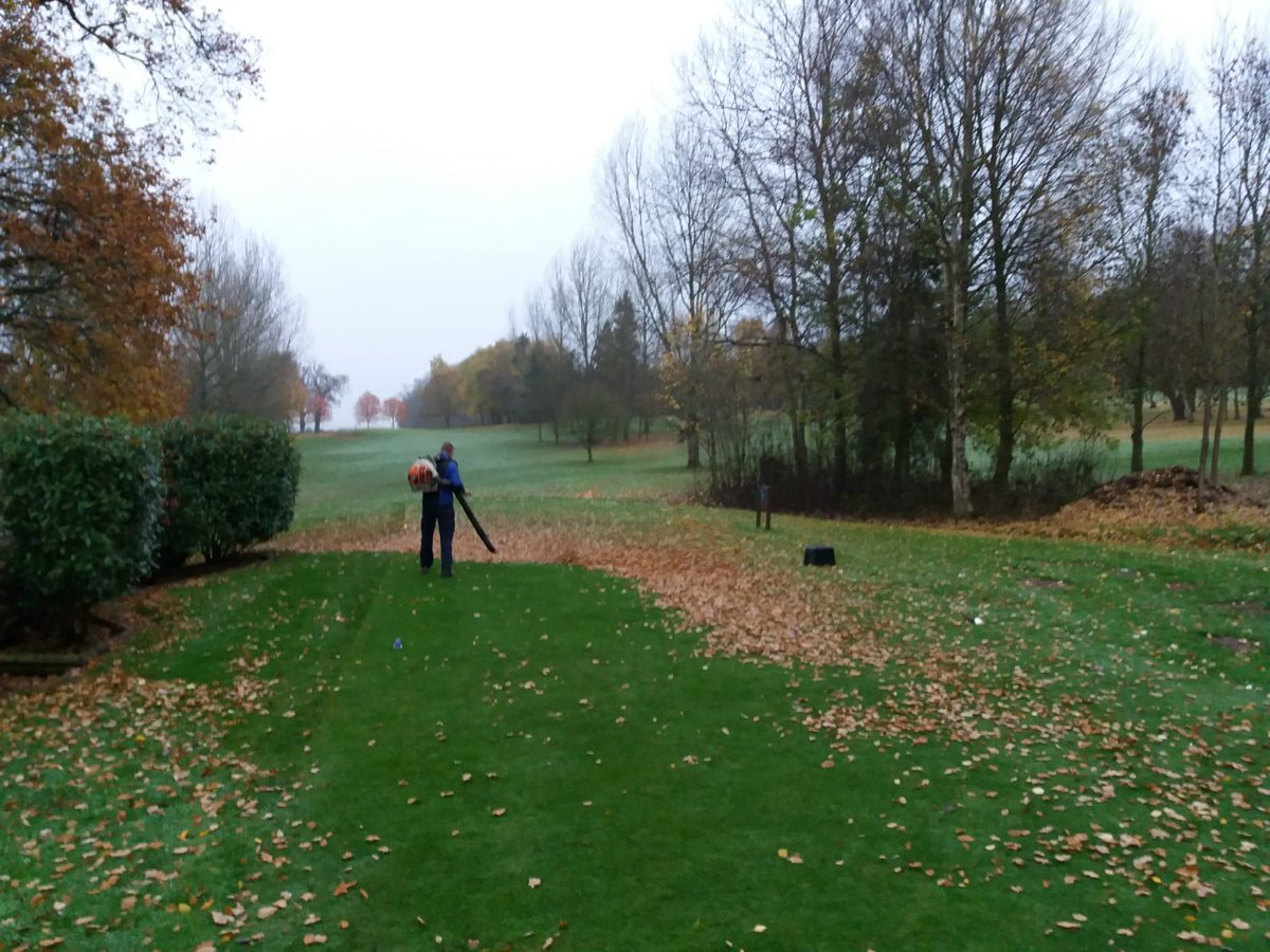test Twitter Media - Saturday...Course  open.  Buggies on green. All main greens in play and looking good for November. Loads of leaves again today but lads doing a great job clearing the main playing areas @IngestreParkGC @andyb381 @IanDaviesEEEgol https://t.co/49rBWACpZm