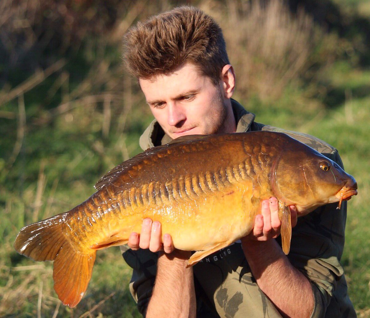 Stunning River Carp #carp #carpfishing #carpy https://t.co/whVO6k1Iq4