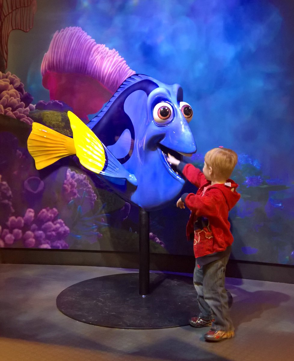 I think... it's fairly safe to say, he found Dory.... and possibly her uvula. #KidsActivities #GoneFishing https://t.co/yJWHb4d2GM