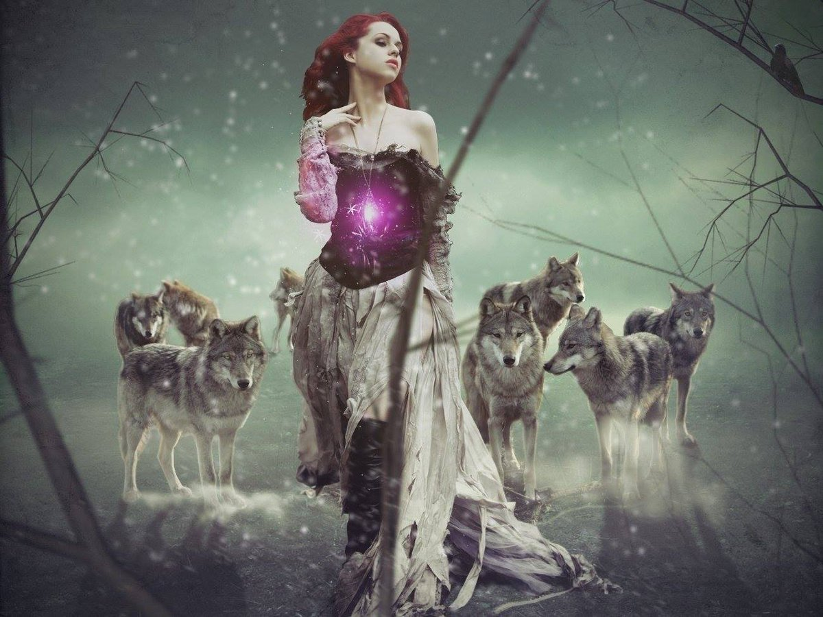 test Twitter Media - Throw me to the wolves and I will return leading the pack! #fantasyfan #fantasynovel https://t.co/0i24MBAmLa