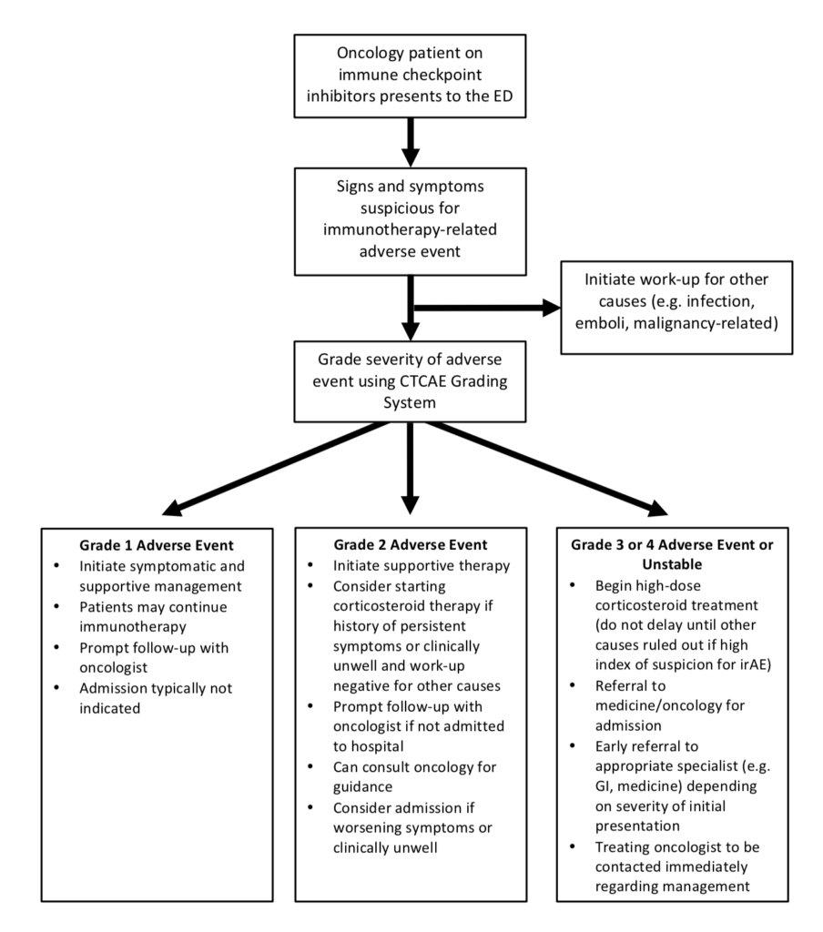 test Twitter Media - onc emergencies in the ED in the age of immunotherapy at @WeAreCanadiEM https://t.co/uTq6BJgpkI -ST https://t.co/8f1e3K9Iqs