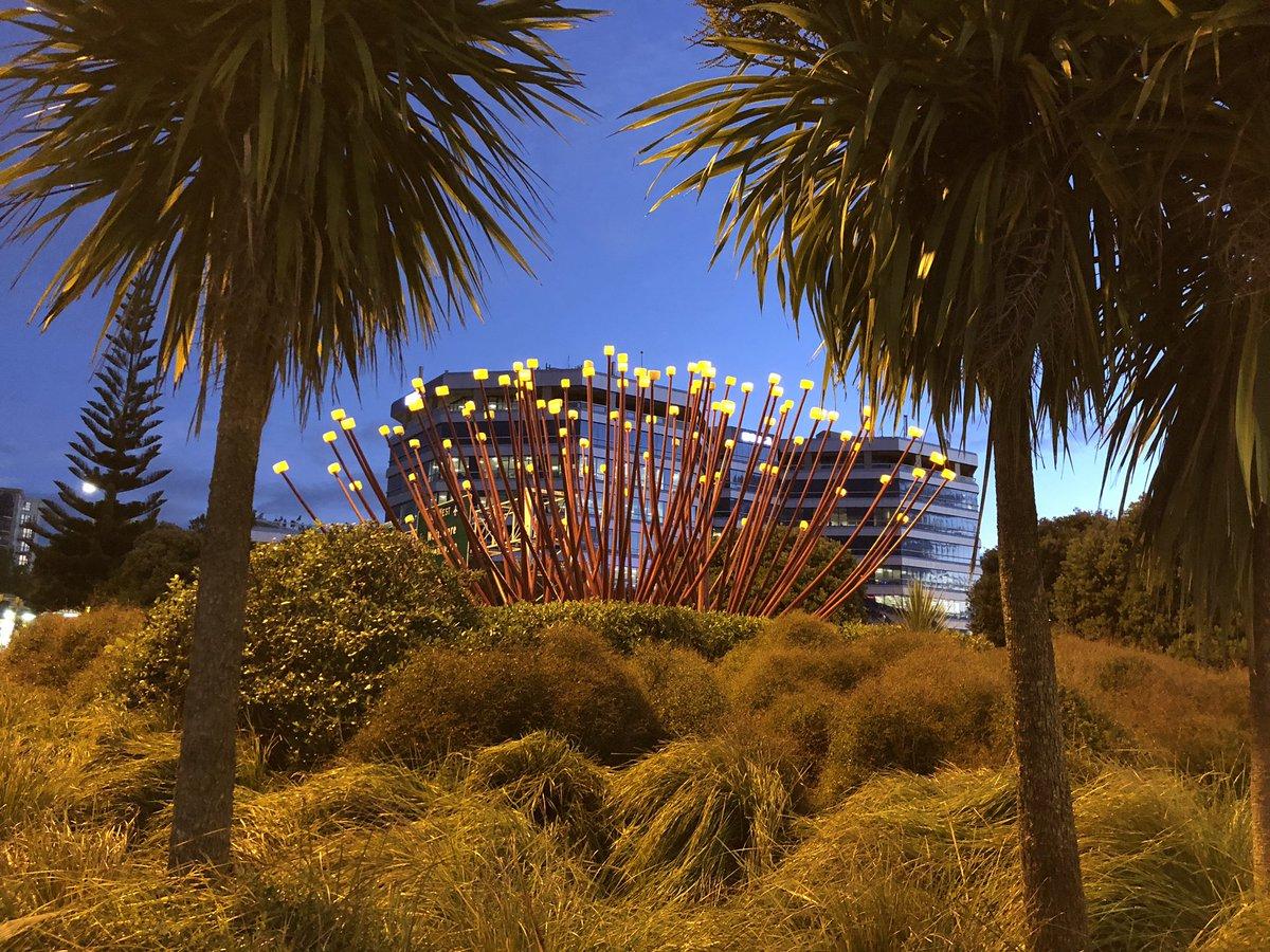 Good night from Auckland #travel #wednesday #newzealand