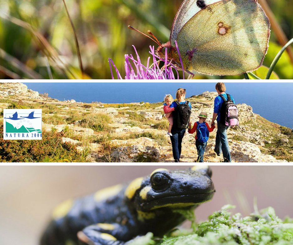 test Twitter Media - In line with the #UNBiodiversityConference #COP14 call to step up efforts to stop biodiversity decline, we publish an updated guidance document to help all to conserve and manage #Natura2000, the largest coordinated network of protected areas in the world https://t.co/b5GgobK62I https://t.co/ElFCo6ufGK
