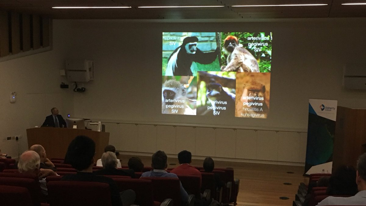 test Twitter Media - Given HIV and Zika originated from African monkeys, is that where the next human virus will also emerge?  @dho found new viruses across different species of primates which have similar characteristics to the virus that caused HIV and can jump species barriers. @TheDohertyInst https://t.co/kMrsDYHBEg