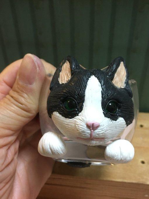 白黒 猫 ハチワレ イラスト