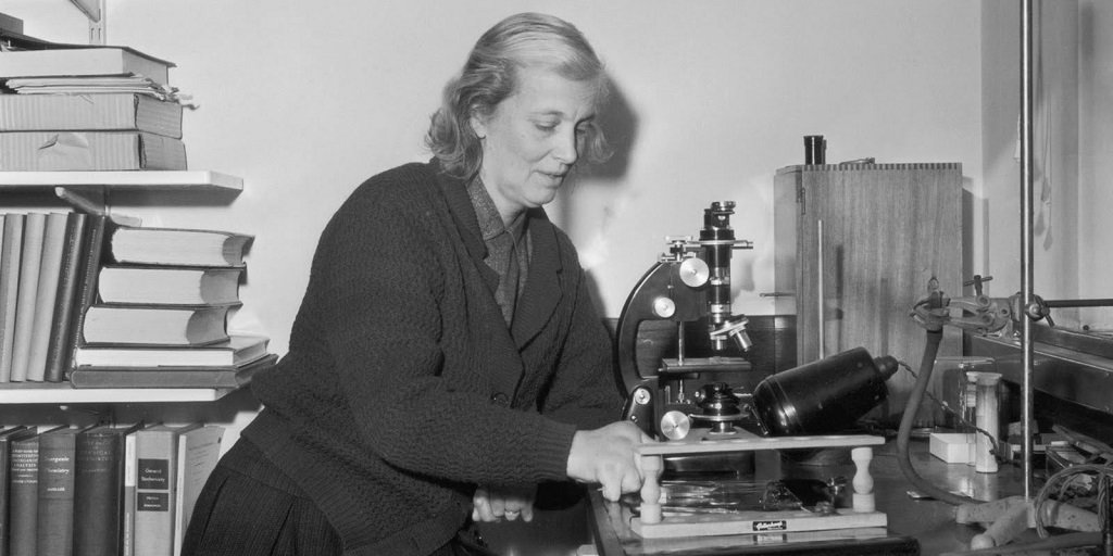 test Twitter Media - Dorothy Hodgkin remains the only British woman to have won a Nobel prize in science. For everything she's done for people with #diabetes, we're championing her to be the face of the new £50 note. Read her story and make your nomination before 14 December: https://t.co/aDS1W0Wq41 https://t.co/XES81i3rwV