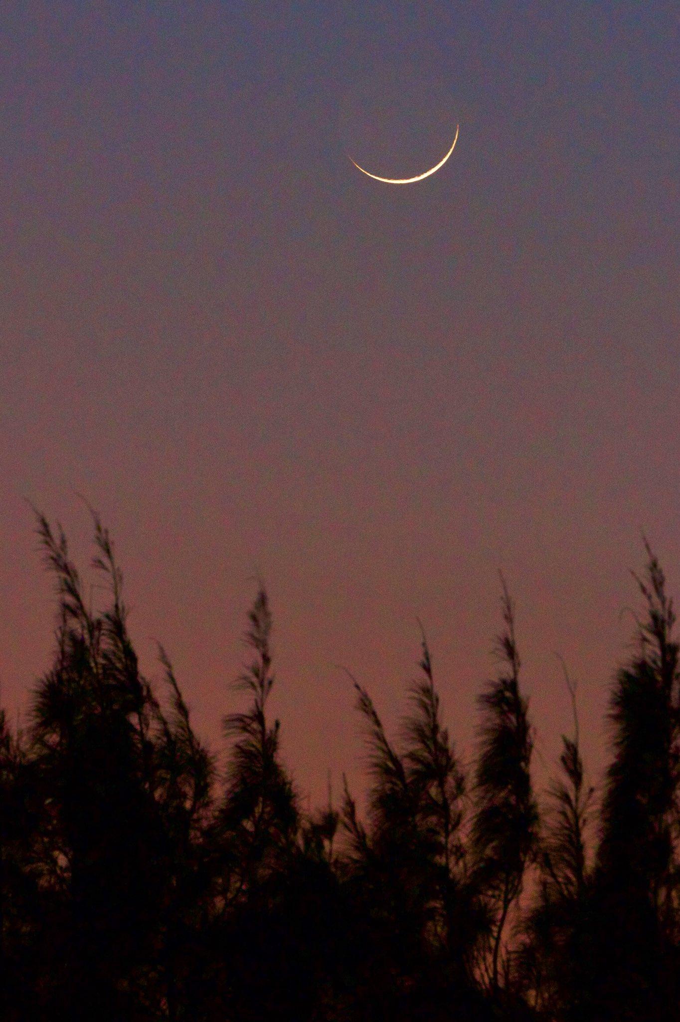 RT @fotogarrido: La sonriente luna creciente de otoño sobre la Heroica #Veracruz #México 🇲🇽  Luna de sábado.  @El_Universo_Hoy @webcamsdemexico https://t.co/bcxOk7RBwh