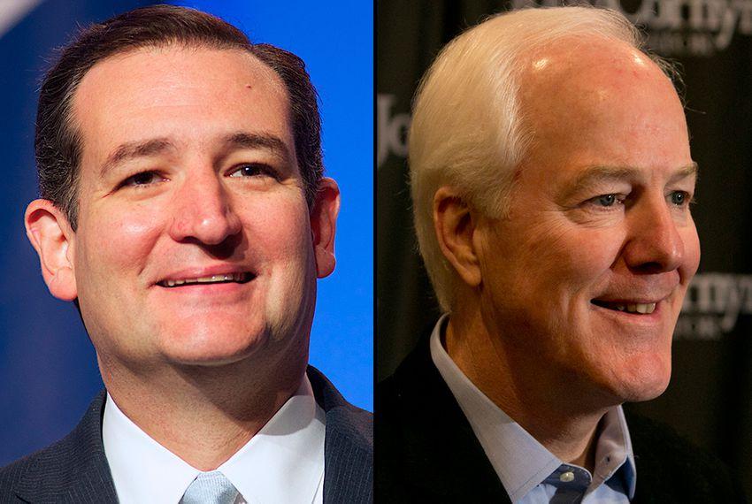 Ted Cruz Endorses John Cornyn for Re-election https://t.co/KfVZ85icdf  @TexasTribune https://t.co/j6WL1xIGTd