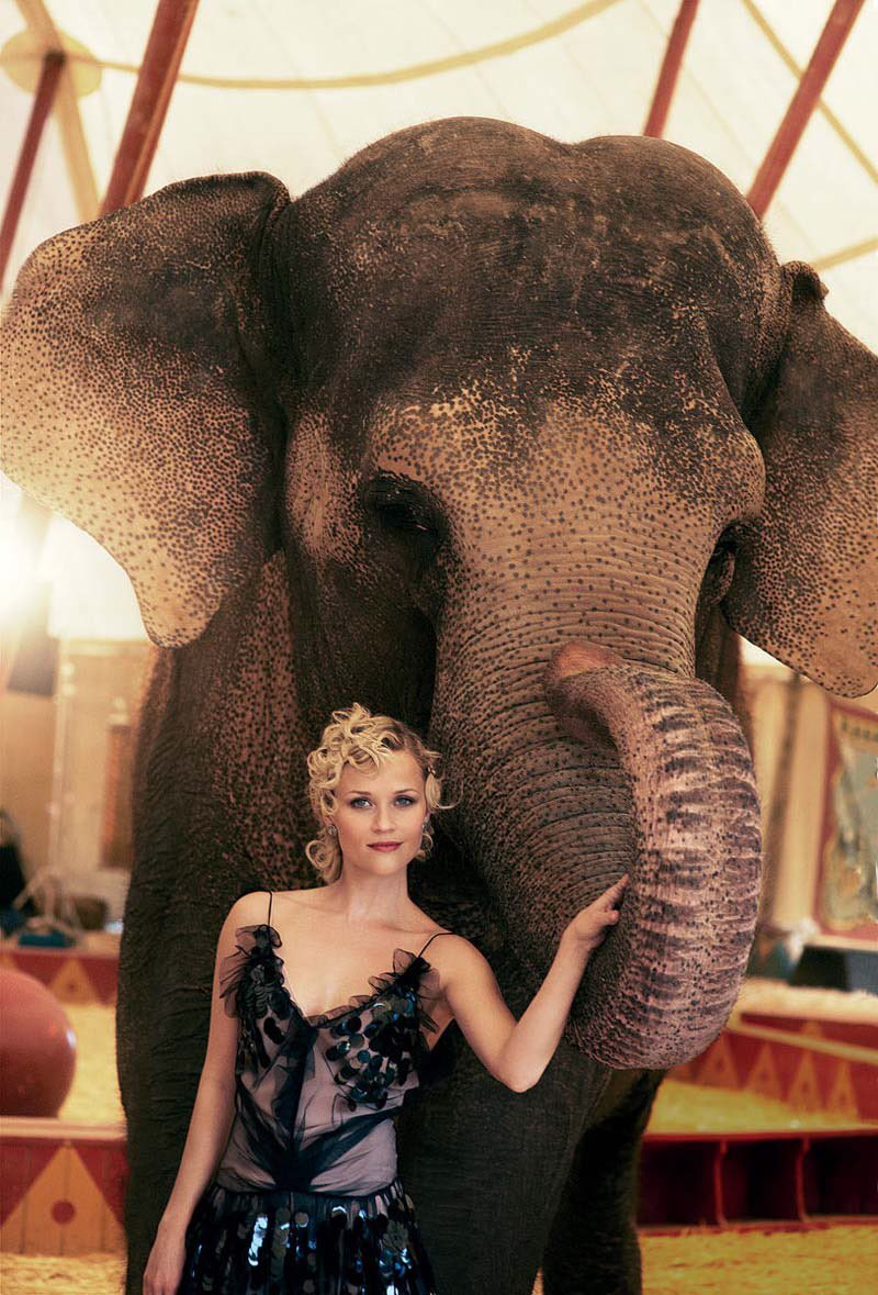 You know… just casually hanging with my #WaterForElephants co-star Tai the elephant (#TBT @voguemagazine) https://t.co/wzUhOo8hOS
