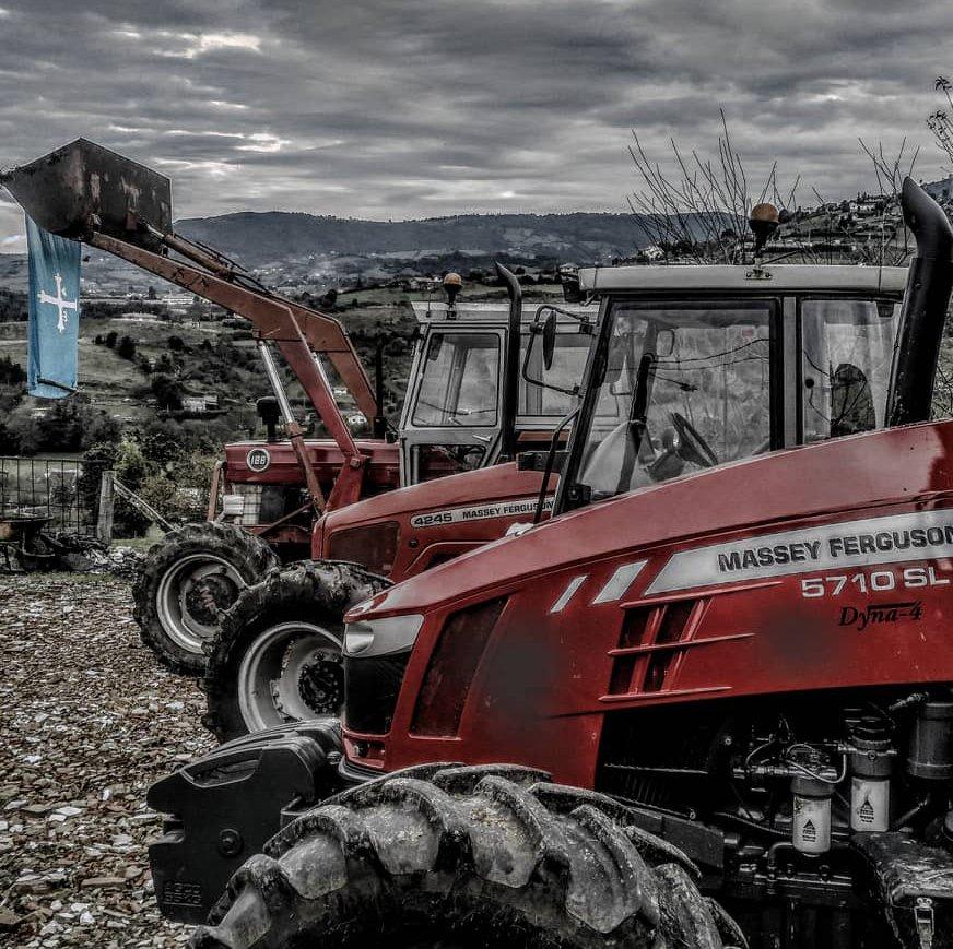 ¡40 años de historia unidos en esta fotografía! Samuel nos ha enviado desde Navia (#Asturias) esta instantánea para mostrarnos su satisfacción con el resultado que después de tantos años le siguen dando sus #tractores Massey Ferguson 😊 https://t.co/PRd9sFBkB5