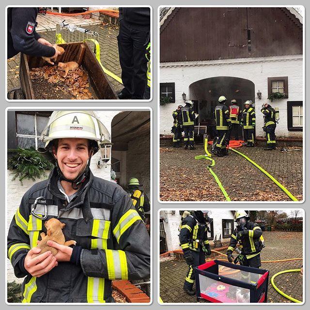 test Twitter Media - #feuerwehr #nordhorn #feuerwehrnordhorn #grafschaftbentheim #gottzurehrdemnächstenzurwehr #brand #feuer #fire #einsatz #112 #notruf #ofen #kamin #landwirtschaft #bomberos #blaulicht #fire #firefighter #firerescue #pompiers #emergency #chive #vigilidelfuo… https://t.co/sXSUnqi9xY https://t.co/Lh9gzwZ4sm