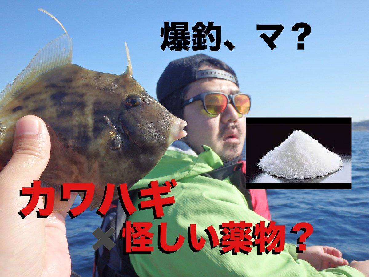 またまた更新しました。 お暇な時によろしくどーぞ!  【海のカヤック釣り】違法?白い粉で釣りまくり! https://t.co/if4zi91JCy @YouTubeより https://t.co/lJiJC9yqsi