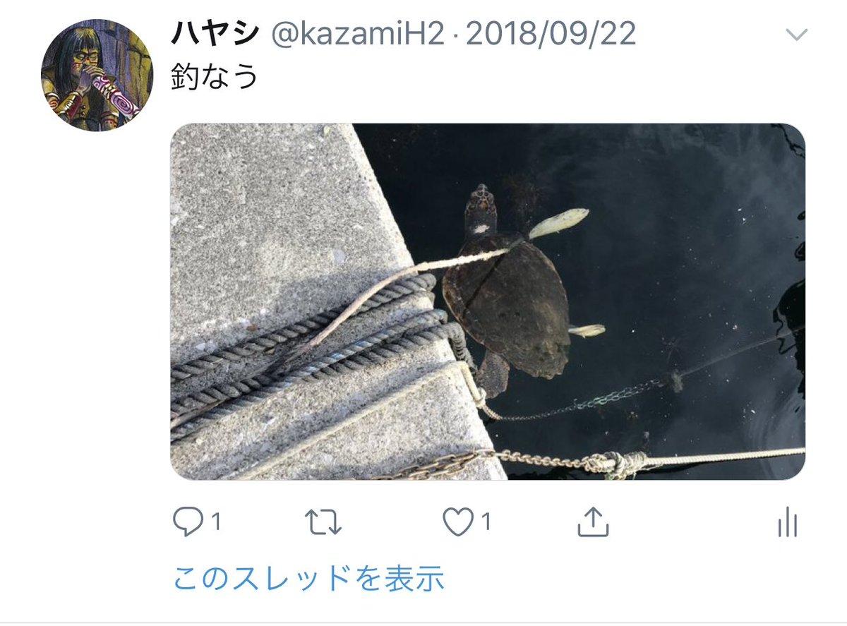[9月] 釣りで海亀を見る そして、サバゲーを1年経ってやっと装備を集め始める https://t.co/K2cFO8HiCQ