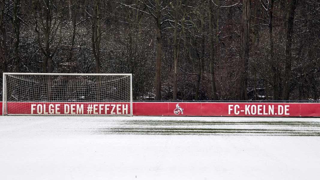 Testspiel gegen Bochum - hier gibt es die ersten Details zum Winterfahrplan des #effzeh. https://t.co/pMimBvYiH0 https://t.co/9EpFD3ebin