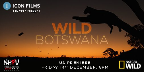 Botswana is a place where powerful forces create a unique patchwork of lands and each iconic landscape is the backdrop for an incredible array of wildlife. Tune into the US #premiere of #WildBotswana #tonight at 8PM on @natgeowild #tvseries #outnow #Botswana #wildlife @NhfuBots https://t.co/1kaO6N681c