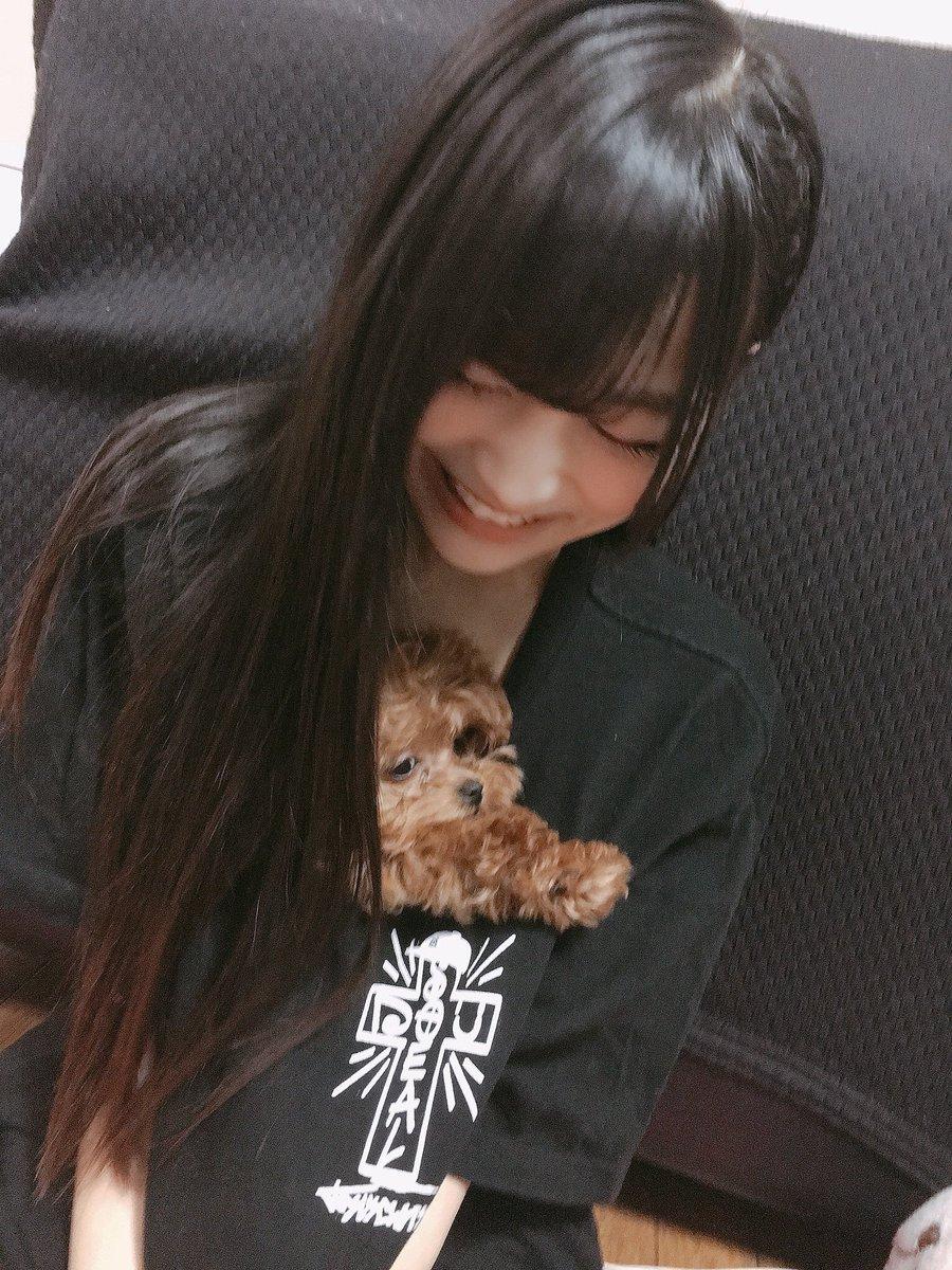 test ツイッターメディア - 本日12月17日は柊宇咲(@usa_Monoga )ちゃんの愛犬チャロちゃんの1歳のお誕生日です㊗️👏  チャロちゃんお誕生日おめでとう🎉 これからも宇咲ちゃんに笑顔と癒しをたくさんあげてね🐶☺️✨  #柊宇咲 #チャロ  #愛犬 #お誕生日おめでとう 🎂 https://t.co/OSIOocZkK8