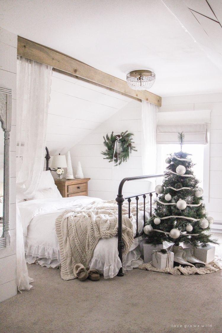 test Twitter Media - Duikt vroeg haar bedje in. Beetje cozy kerst vandaag. En rustig naturel. #interieur   Foto: Liz Fourez #lovegroeswild https://t.co/kHuEIF3EDg