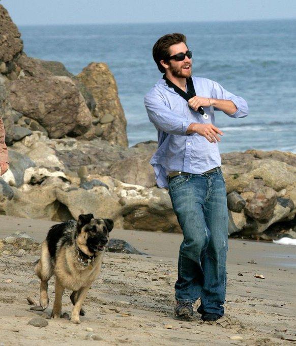 Happy birthday to jake gyllenhaal