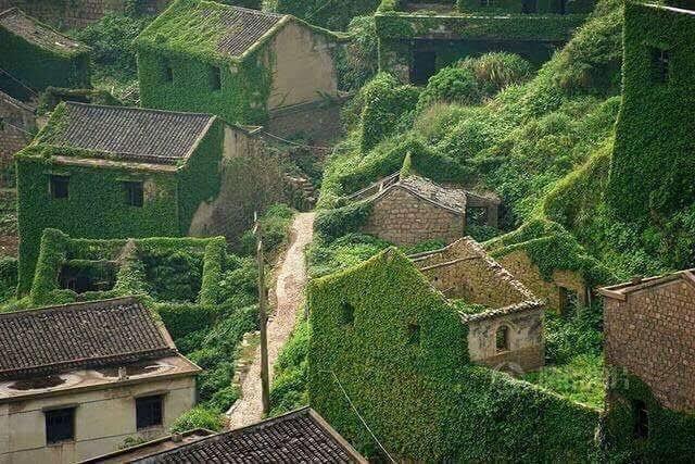 Çinde terk edilmiş bir köyü doğa sahiplenirse.. Masalları andıran muhteşem bir görüntü. https://t.co/iv9J6h6mV0