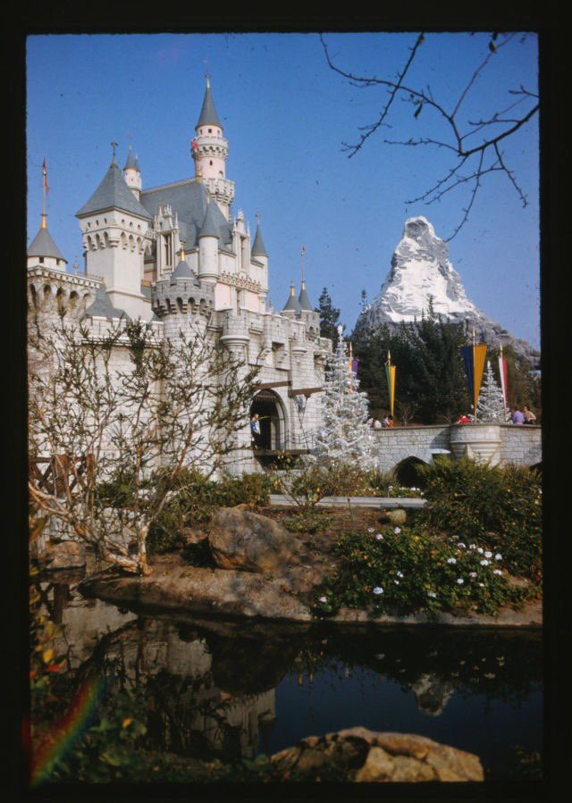 Christmas at Disneyland in 1961. Always loved the trees in the castle moat. https://t.co/Ueb15GTxxu