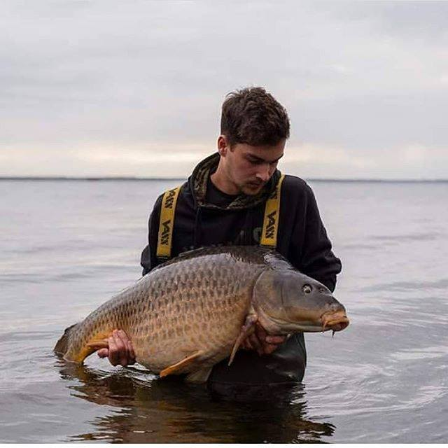 Big vista, big common.. 📸@tomdemaat #navitas #navitasangling #fb #carpfishing #carpangler https:/