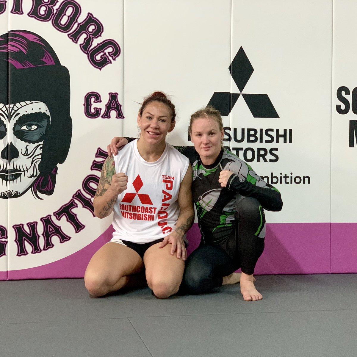 RT @BulletValentina: Good luck my friend @criscyborg tonight !!! #UFC232 https://t.co/WAJz3TkVW3