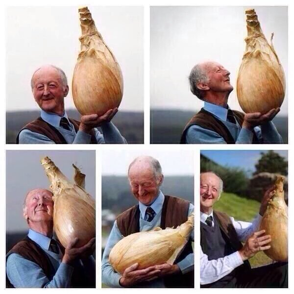RT @Mr_Mike_Clarke: Find someone that loves you as much as this guy loves his onion!  #MondayMotivation https://t.co/wS0sXlIRJP