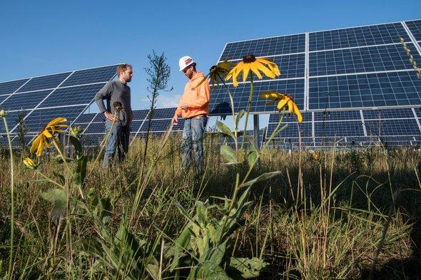 test Twitter Media - A trend of planting wildflowers on solar sites could maintain habitat for disappearing bees and butterflies https://t.co/Zx19fn6QLp https://t.co/i0jOq8le1q