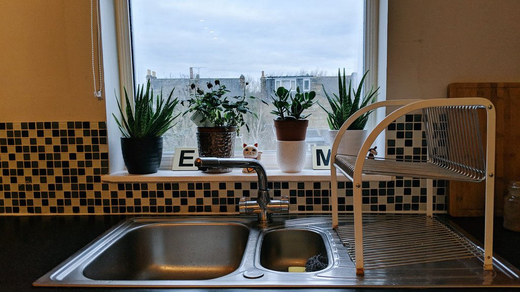 test Twitter Media - So there's FOMO and now something called JOMO, the Joy Of Missing Out. I may possibly have obsessive cleaning disorder since I've moved into my new place, but boiy it's refreshing and satisfying coming home to see this. Meet my kitchen sink & plant life. Inspired by @mrshinchhome https://t.co/BFlxrthVeb