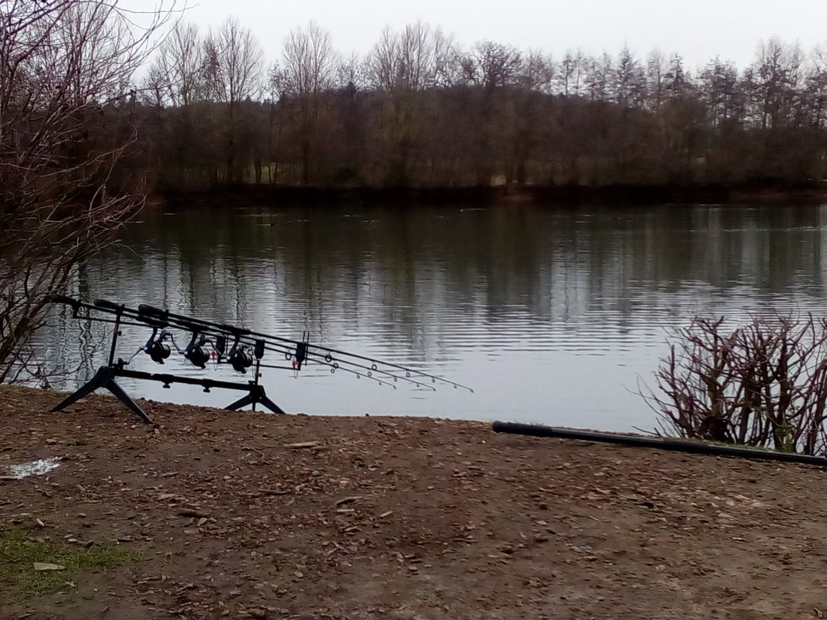 Nice lake but 30 + more hens,, so no <b>Free</b> bee's today #carpfishing https://t.co/RYw2BGeXf8