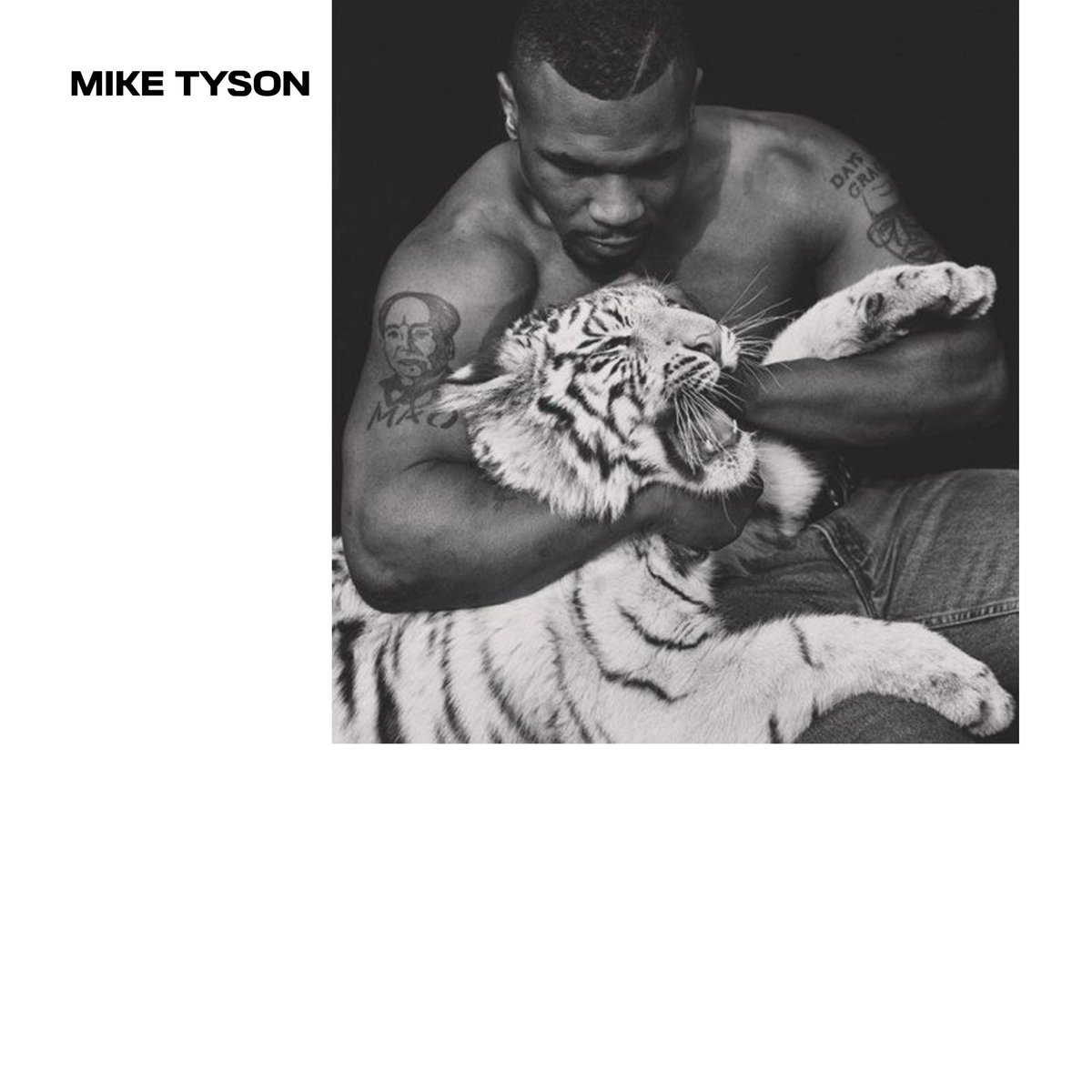 Not many can say they raised a tiger.  #vintagetyson https://t.co/Lw6qctV5gq
