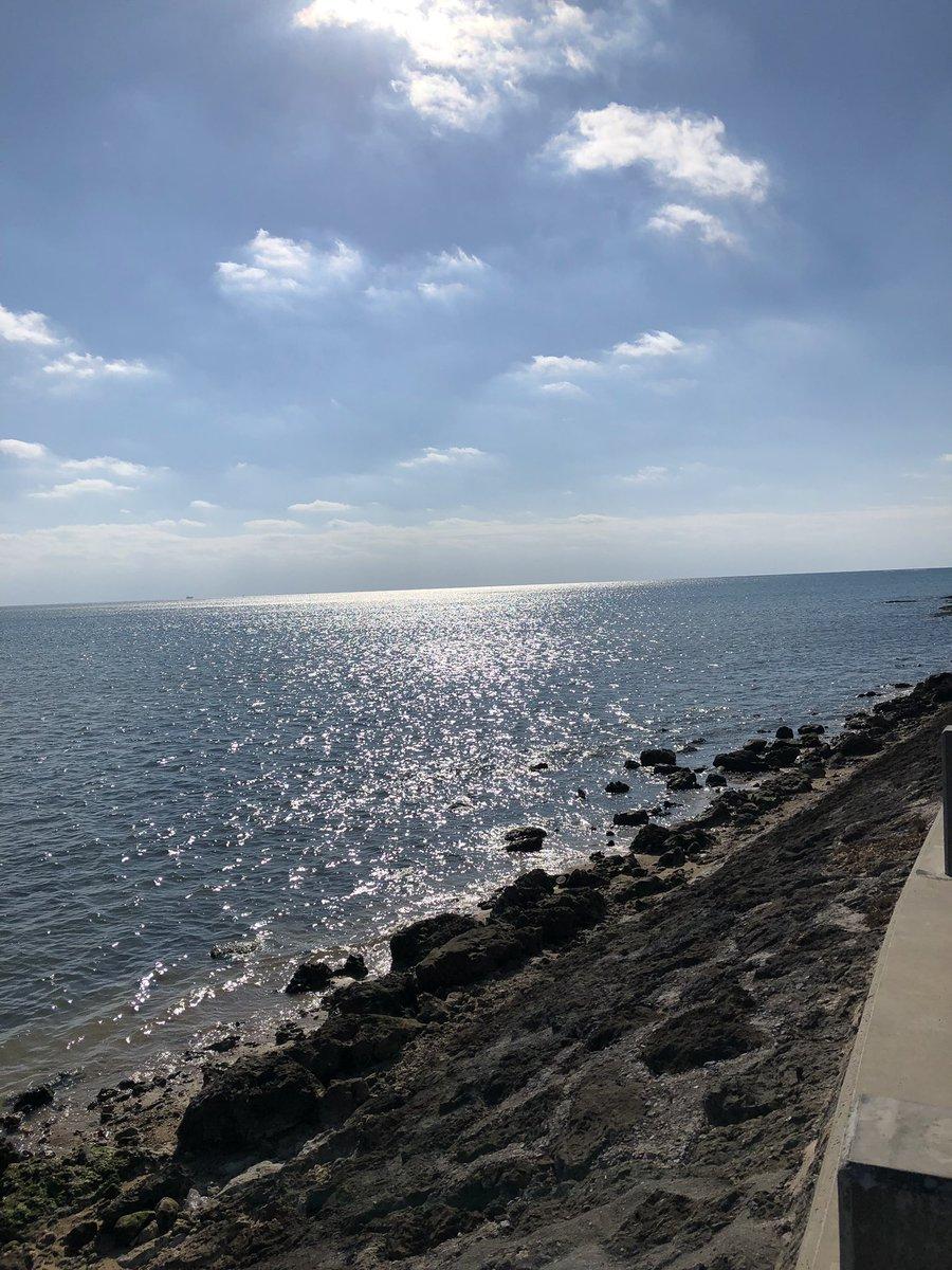 漁港に行きたい。。イカ釣りしたい。船をみたい。釣り人を眺めたい。潮の匂いと海の色、近くまで行って確かめたい。2019年は漁港や海で釣りを楽しむつもり。 https://t.co/KbwAca3JL4
