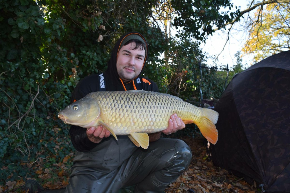 1<b>6lb</b> common from my last trip #CarpFishing https://t.co/wCtU7O14MP