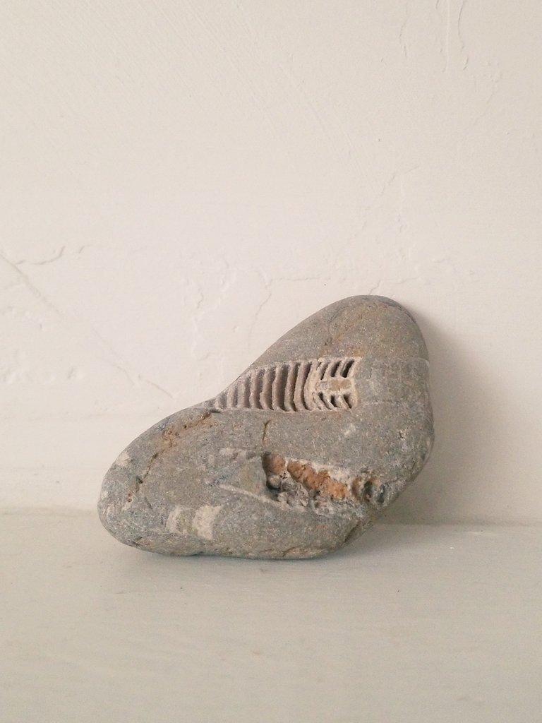 RT @pamma1_coldlake: Fossilized crinoids. Used to stump a paleontologist once. @Paleoprof https://t.co/VhhSaKWSY4
