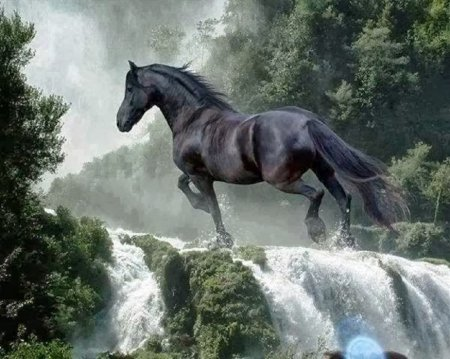 test Twitter Media - Only a magical stallion on a mission could surmount the power of a waterfall. Who beckoned him and why? Happy #fairytalefriday  #fantasyfan #blackstallion #tenfingerstouching https://t.co/brJk6Du6NA