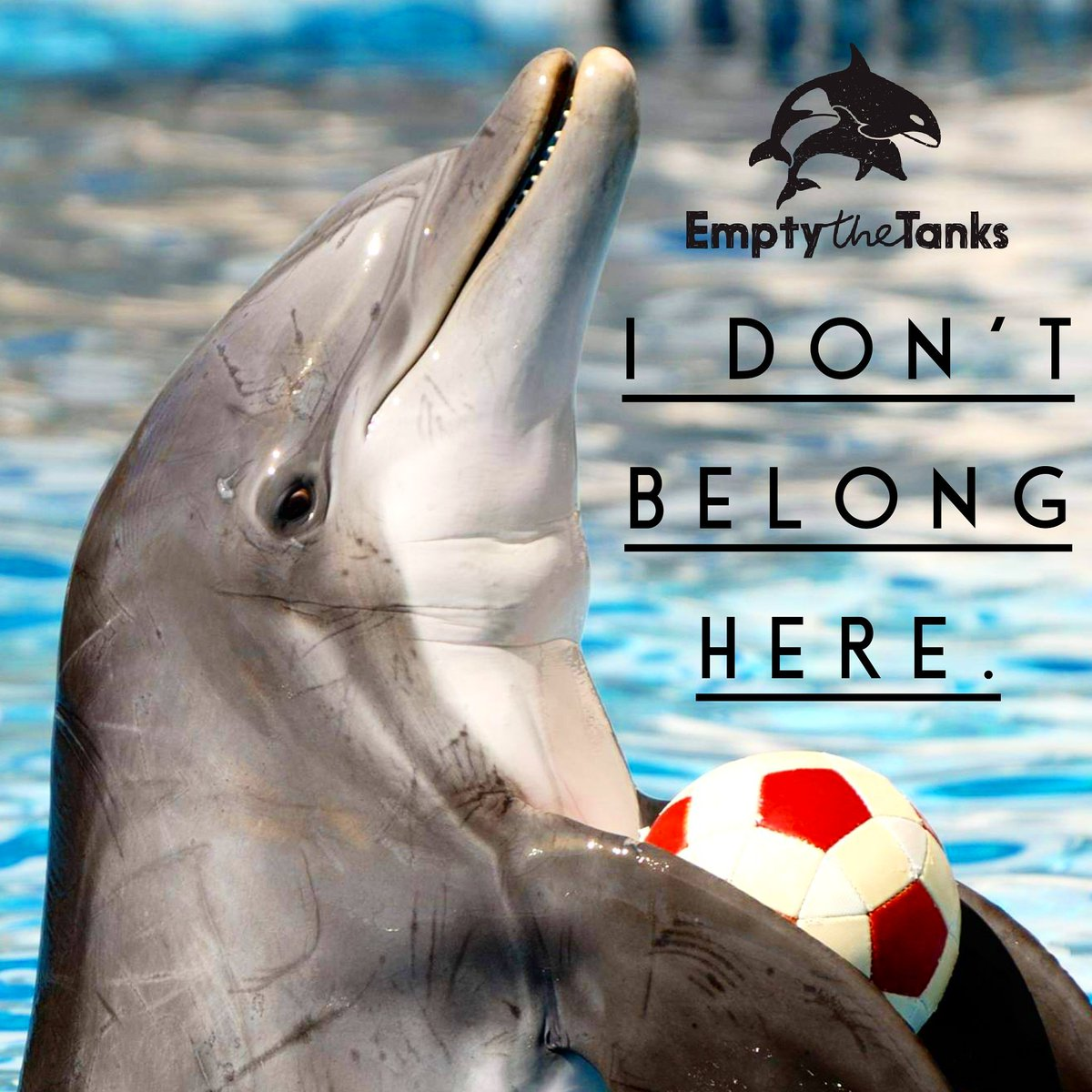 RT @Empty_the_Tanks: Be their voice. #EmptyTheTanks. https://t.co/DLIEjTsRiE