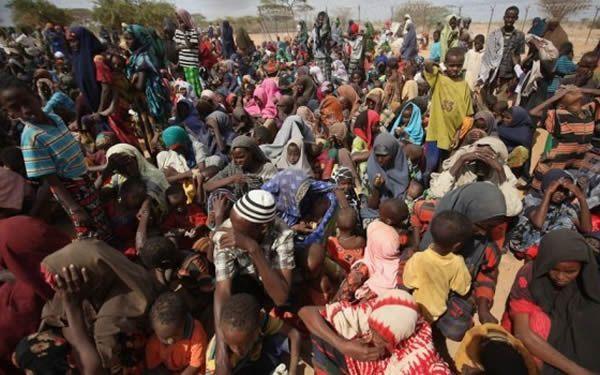 UN raises alarm as Cameroon plans to evict Nigerian refugees toBorno https://t.co/o7DTLaZMAj https://t.co/QFMxnllniz