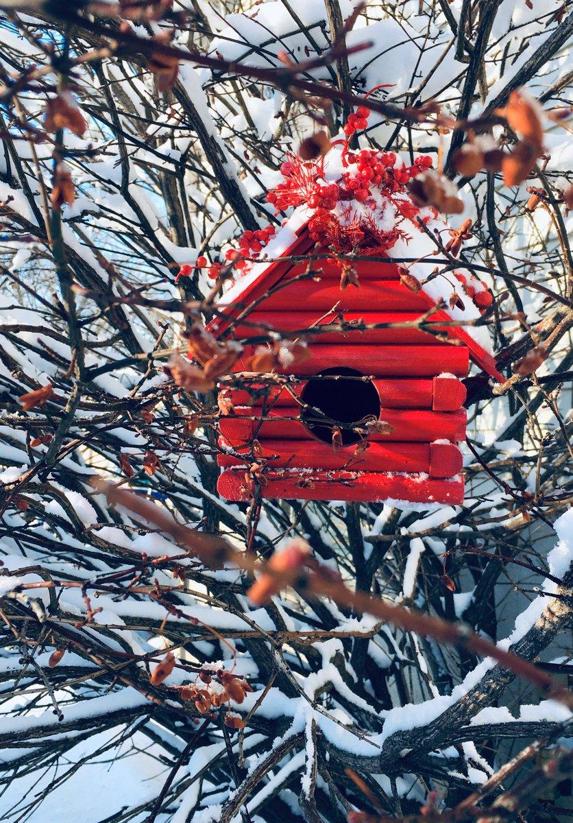 Today's #carpentryart handcrafted #birdhouse ' PillarBox ' nestled amongst snowy branches. #Missouri #GardenersWorld https://t.co/5EoV7KWEKg