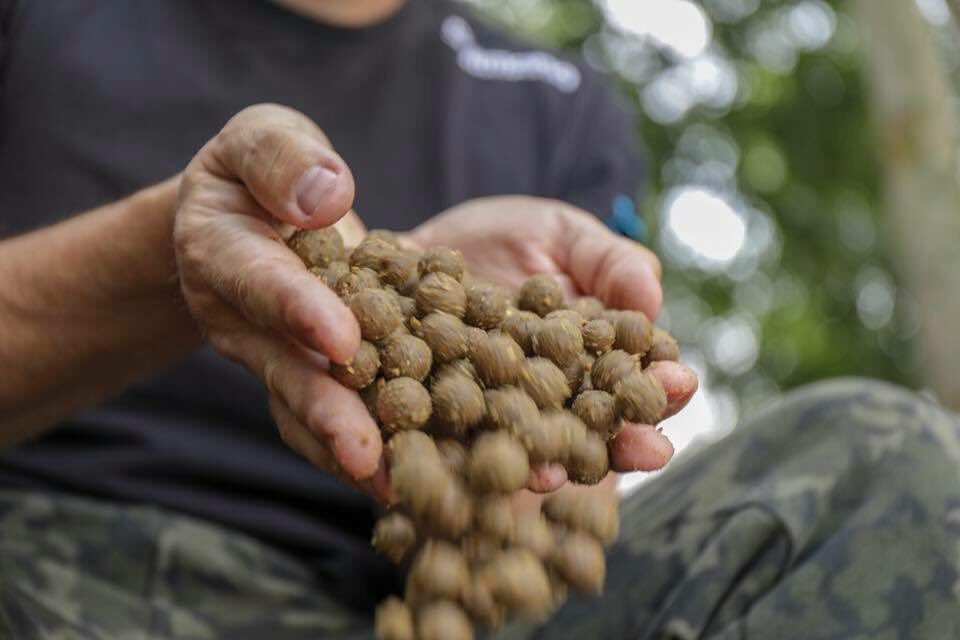 #isolate #fishingbait #carpbait #<b>Shimano</b>fishing #<b>Shimano</b> #carp #carpfishing https://t.