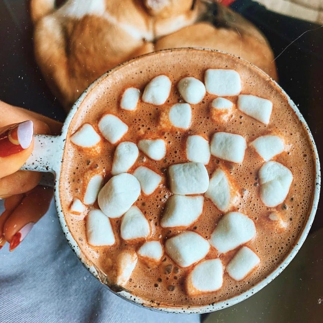 Below freezing calls for hot chocolate, the @leefromamerica way: https://t.co/yovPUiq47g https://t.co/CbHUZxEE5x