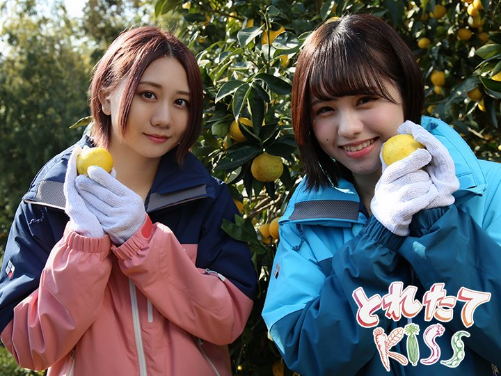 【朗報】TBS「とれたてキス」好評につき2月もSKE48が出演継続!