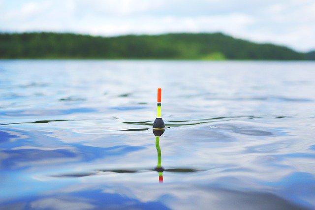 Photo By LUM3N | Pixabay   #<b>Lake</b> #fishing #swimmer #flyfishing #carpfishing #fishingtrip #fis