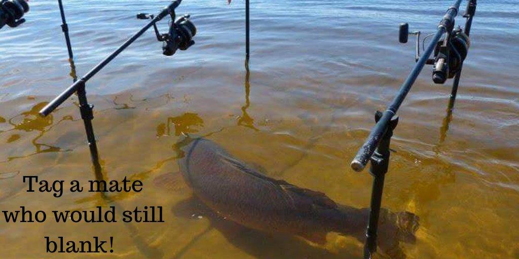Tag a mate who would still <b>Blank</b> #carp #carpfishing #fishing https://t.co/MxipwEiamI